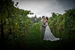 Professional photo in the vineyard